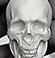 Skull - S